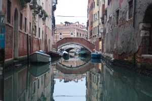 copyright DSZV Venedig